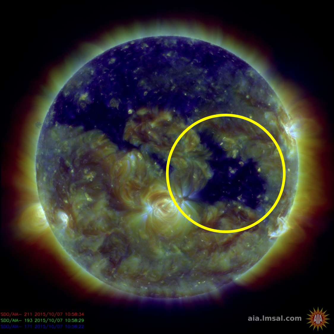 Image of the Sun from the Solar Dynamic Observatory showing the Coronal hole (SDO/NASA)
